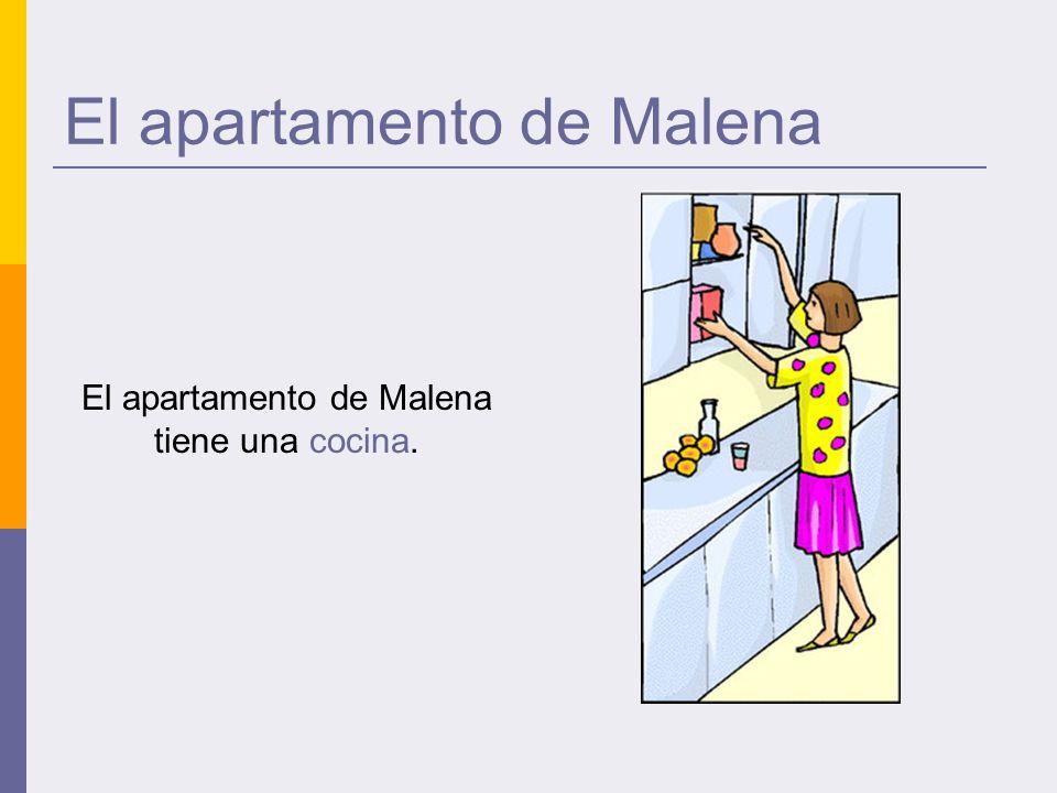 El apartamento de Malena El apartamento de Malena tiene una cocina.
