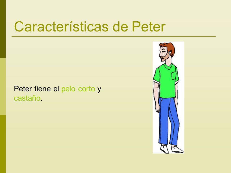 Características de Peter Peter tiene el pelo corto y castaño.