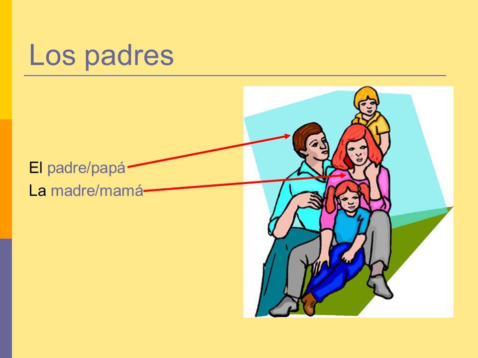 Los padres El padre/papá La madre/mamá