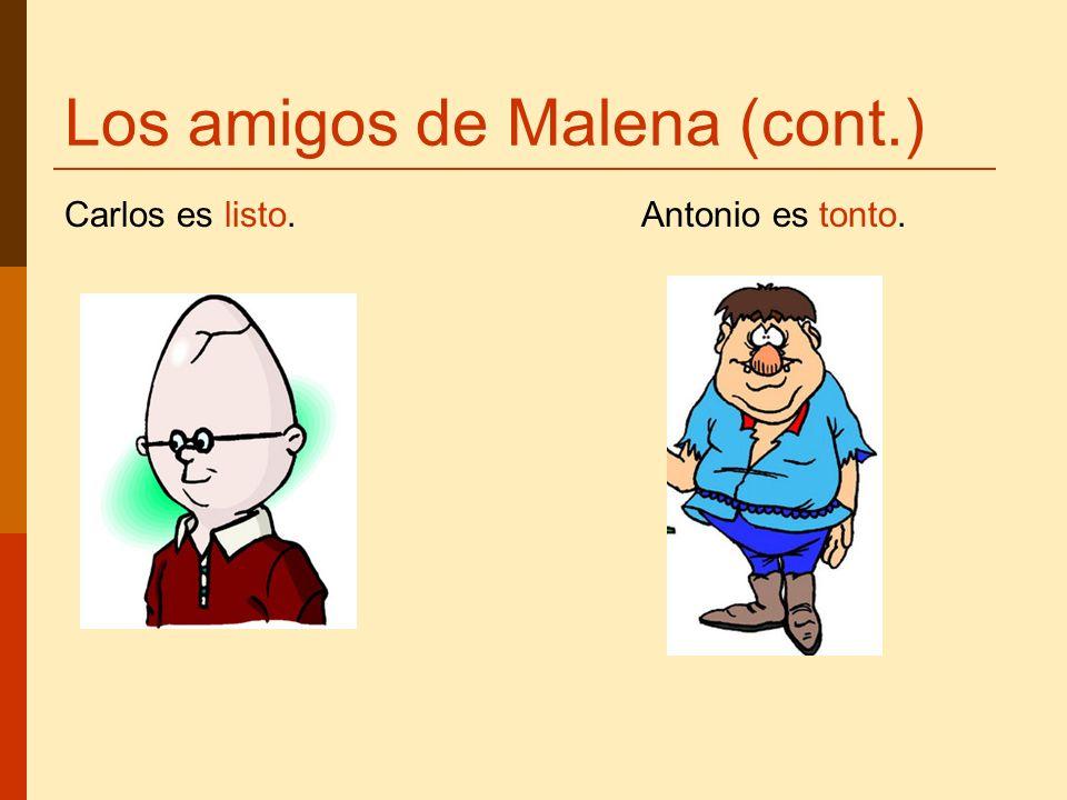Los amigos de Malena (cont.) Carlos es listo. Antonio es tonto.