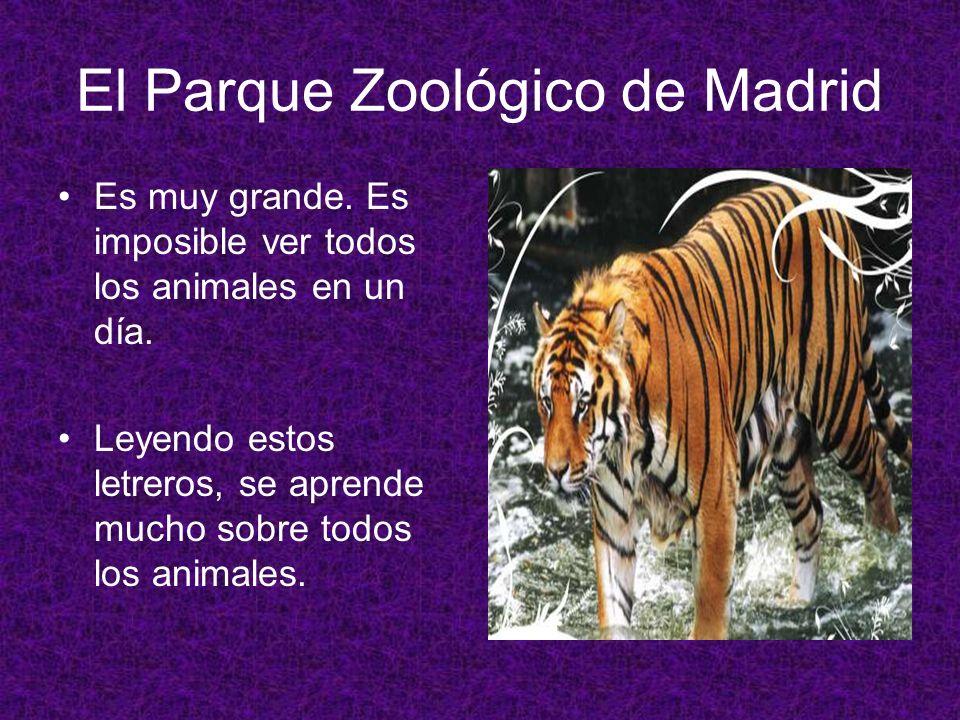 El Parque Zoológico de Madrid Es muy grande. Es imposible ver todos los animales en un día. Leyendo estos letreros, se aprende mucho sobre todos los a