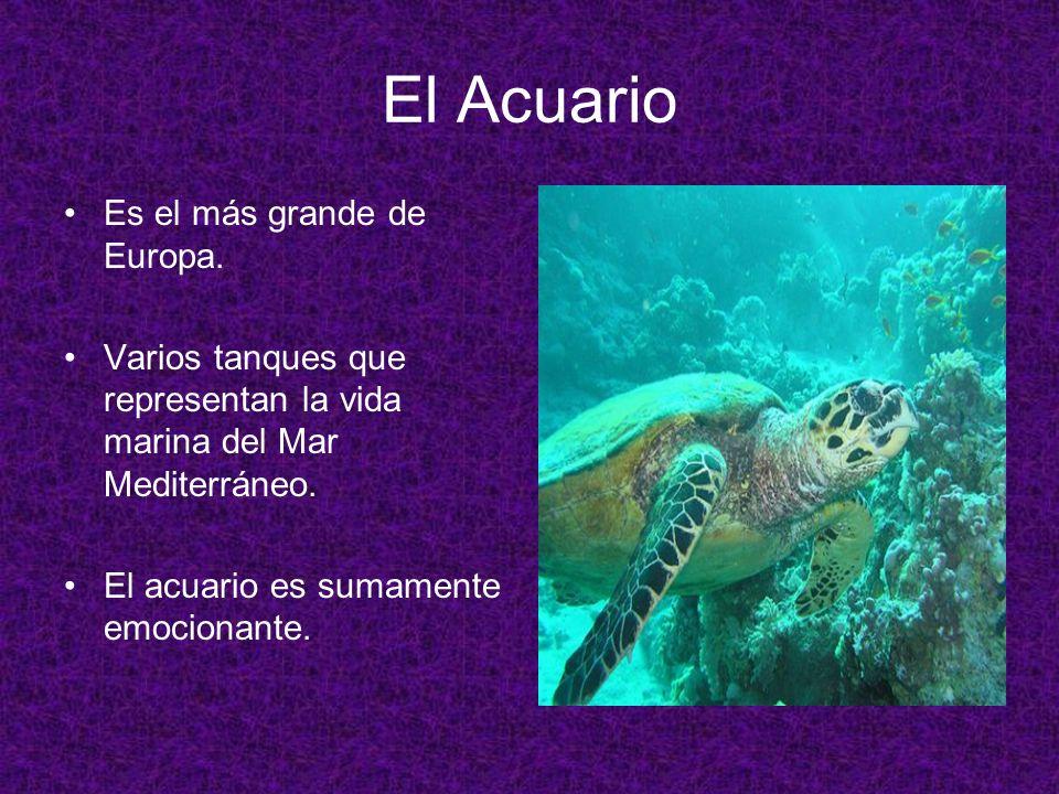El Acuario Es el más grande de Europa. Varios tanques que representan la vida marina del Mar Mediterráneo. El acuario es sumamente emocionante.