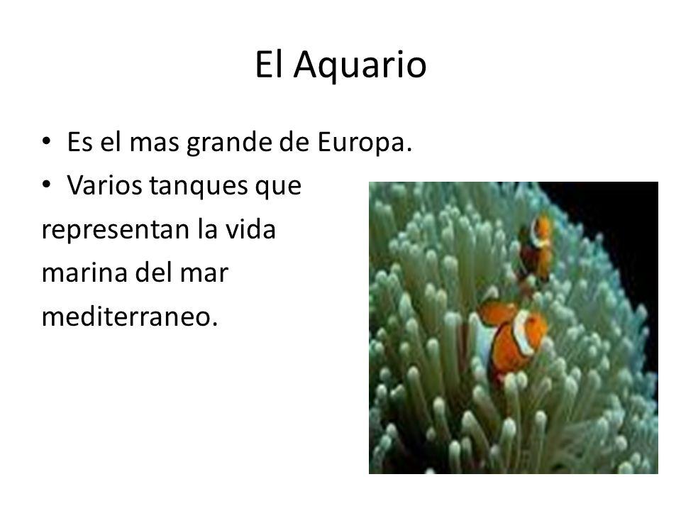 El Aquario Es el mas grande de Europa.