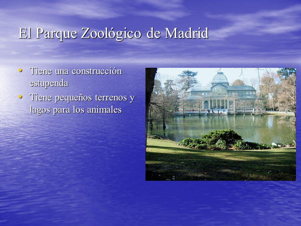 El Parque Zoológico de Madrid Tiene una construcción estupenda Tiene una construcción estupenda Tiene pequeños terrenos y lagos para los animales Tiene pequeños terrenos y lagos para los animales