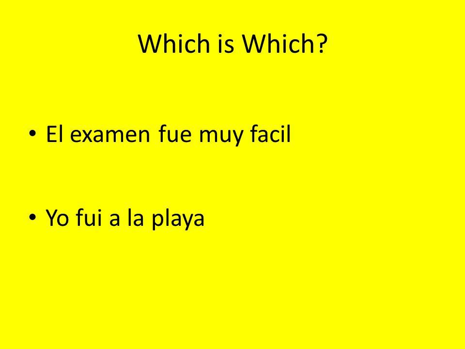 Which is Which El examen fue muy facil Yo fui a la playa