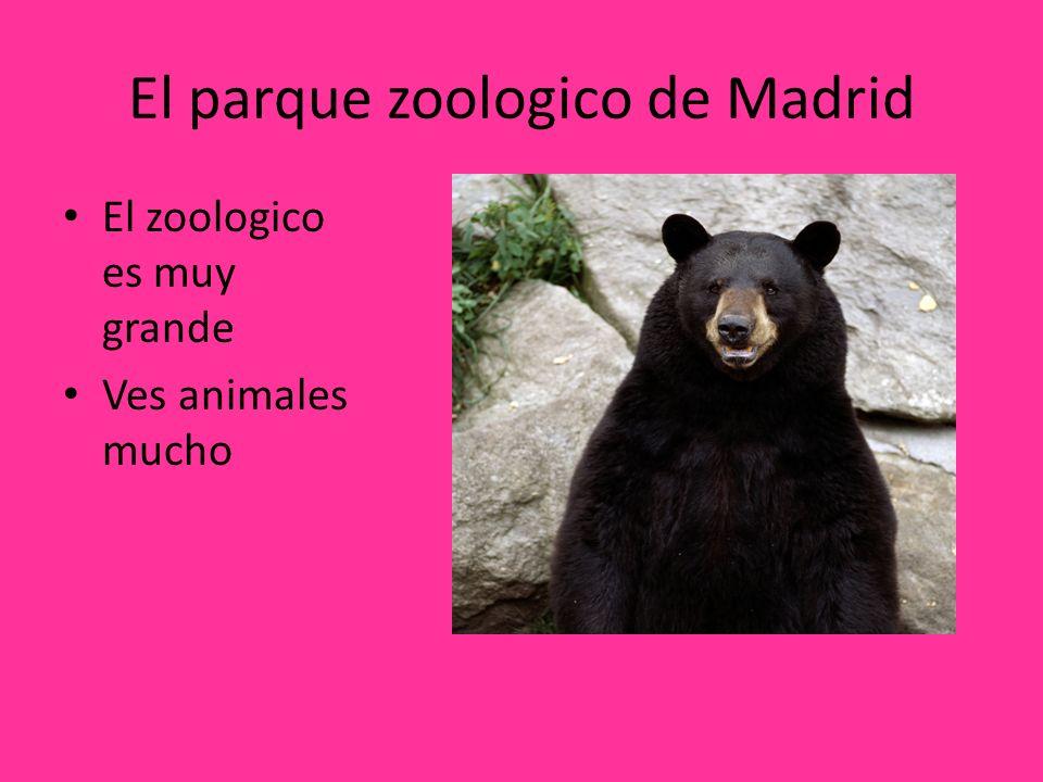 El parque zoologico de Madrid El zoologico es muy grande Ves animales mucho