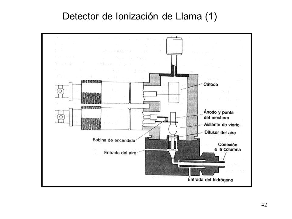 42 Detector de Ionización de Llama (1)