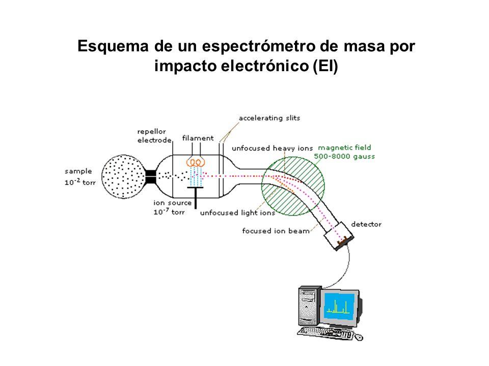 Esquema de un espectrómetro de masa por impacto electrónico (EI)
