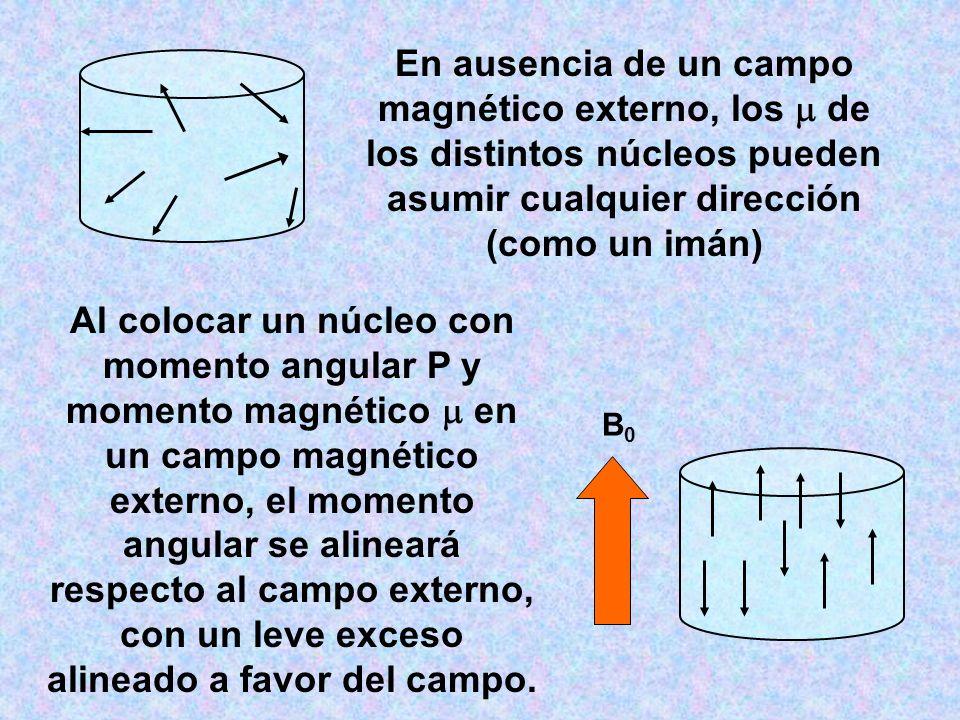 En ausencia de un campo magnético externo, los de los distintos núcleos pueden asumir cualquier dirección (como un imán) B0B0 Al colocar un núcleo con