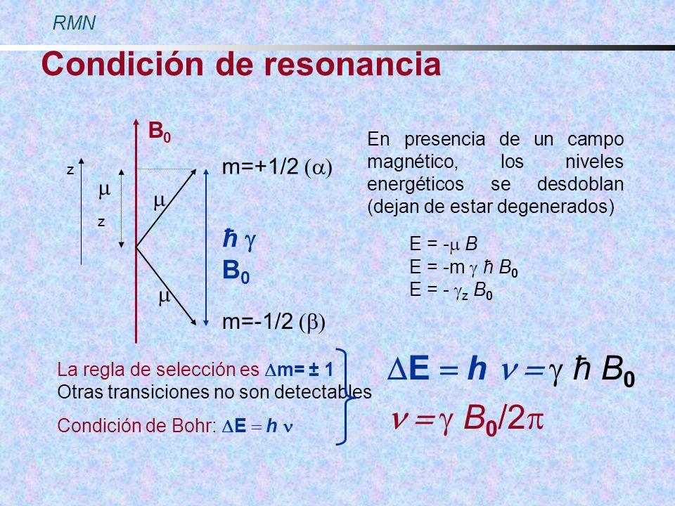 Condición de resonancia z z B0B0 m=+1/2 m=-1/2 ħ B 0 En presencia de un campo magnético, los niveles energéticos se desdoblan (dejan de estar degenera