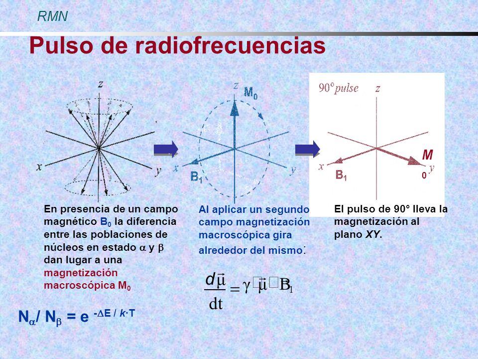 Pulso de radiofrecuencias En presencia de un campo magnético B 0 la diferencia entre las poblaciones de núcleos en estado y dan lugar a una magnetizac