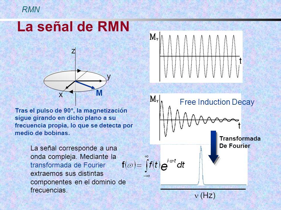 La señal de RMN (Hz) Free Induction Decay Transformada De Fourier Tras el pulso de 90°, la magnetización sigue girando en dicho plano a su frecuencia