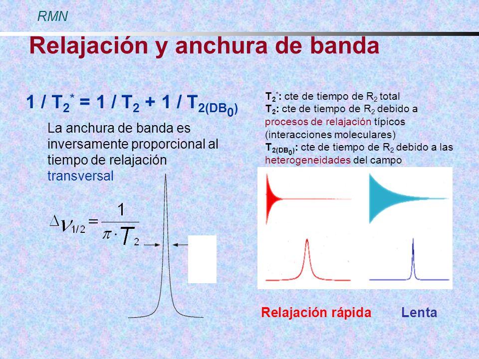 Relajación y anchura de banda 1 / T 2 * = 1 / T 2 + 1 / T 2(DB 0 ) T 2 * : cte de tiempo de R 2 total T 2 : cte de tiempo de R 2 debido a procesos de