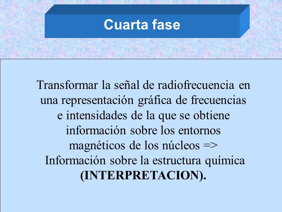 Cuarta fase Transformar la señal de radiofrecuencia en una representación gráfica de frecuencias e intensidades de la que se obtiene información sobre