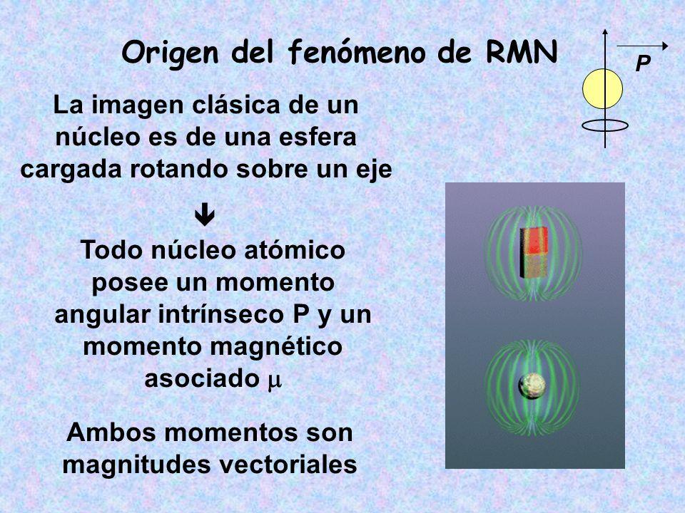 P = I (I + 1) h De acuerdo a la mecánica cuántica el momento angular P está cuantizado: I = número cuántico de spin o simplemente SPIN I representa el spin total del núcleo, es múltiplo de ½ y sus valores van de 0 a 6.