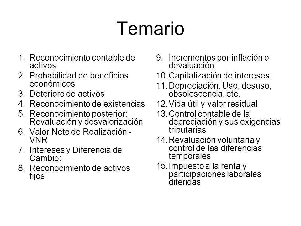 Capitalización de diferencias de cambio NIC 2, p.