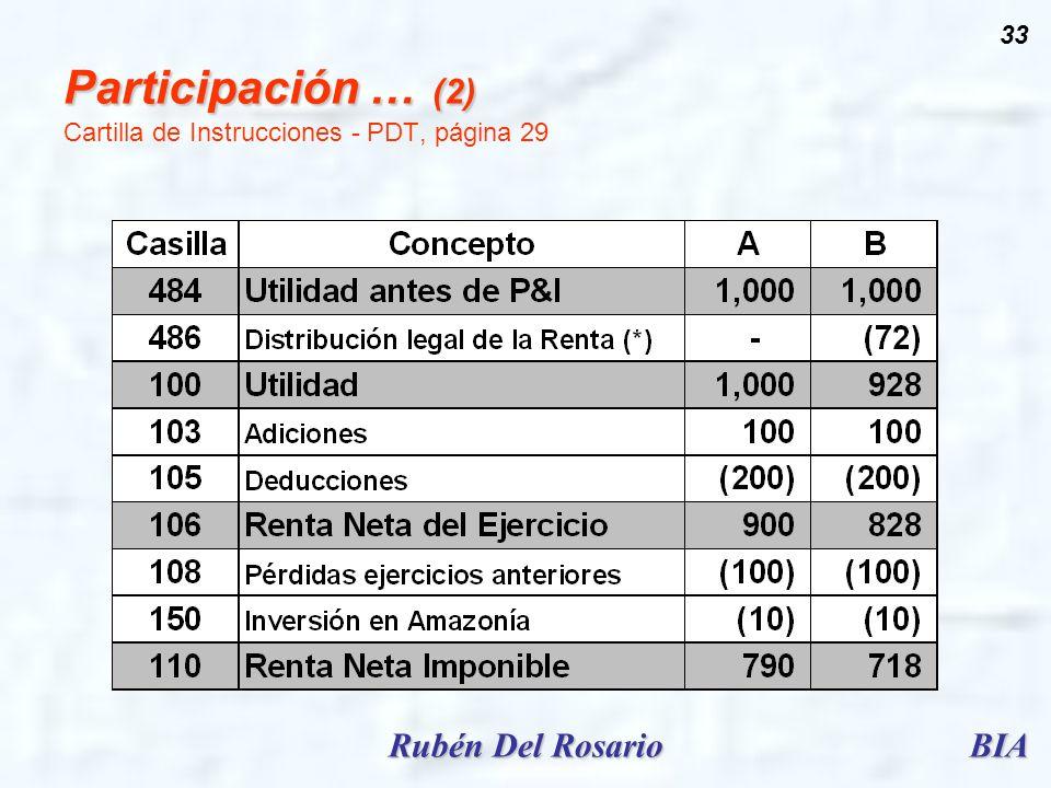 BIARubén Del Rosario 33 Participación … (2) Participación … (2) Cartilla de Instrucciones - PDT, página 29