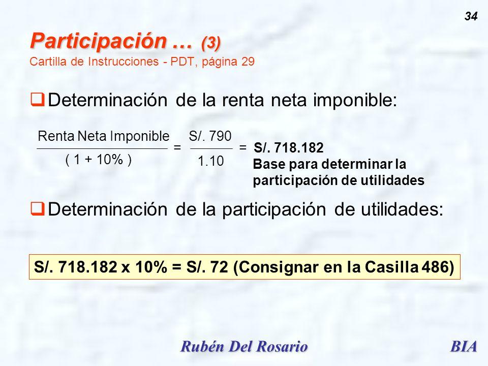 BIARubén Del Rosario 34 Participación … (3) Participación … (3) Cartilla de Instrucciones - PDT, página 29 Determinación de la renta neta imponible: D