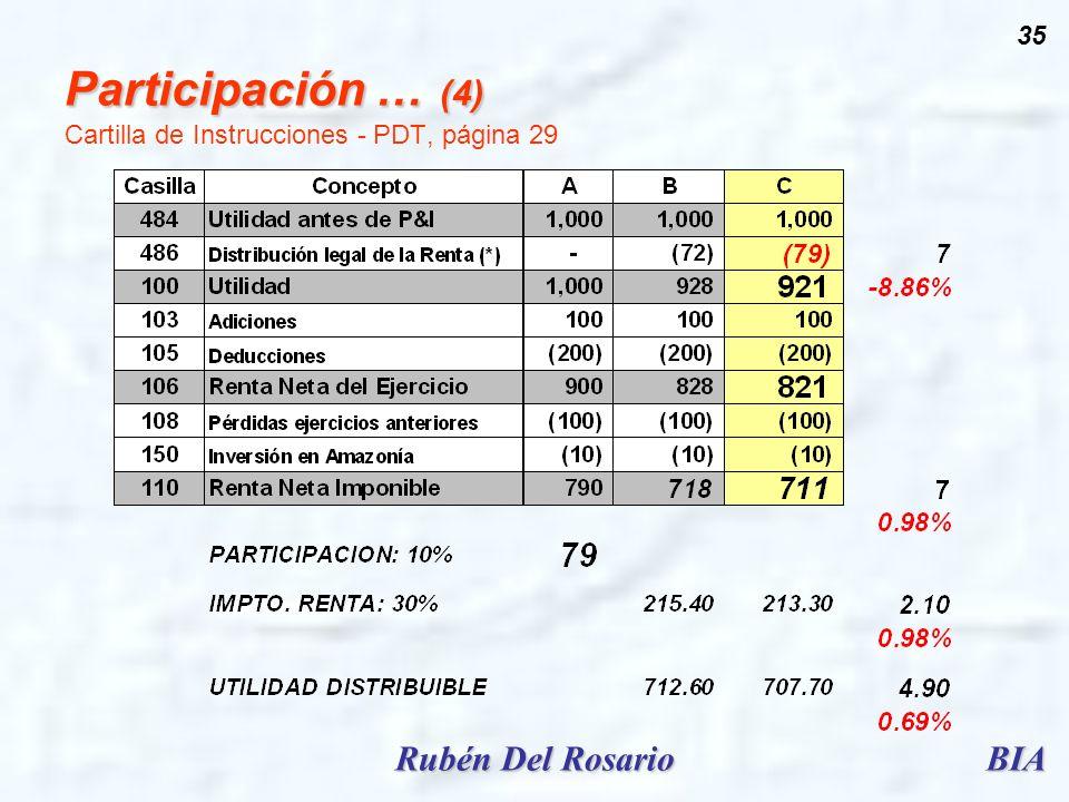 BIARubén Del Rosario 35 Participación … (4) Participación … (4) Cartilla de Instrucciones - PDT, página 29