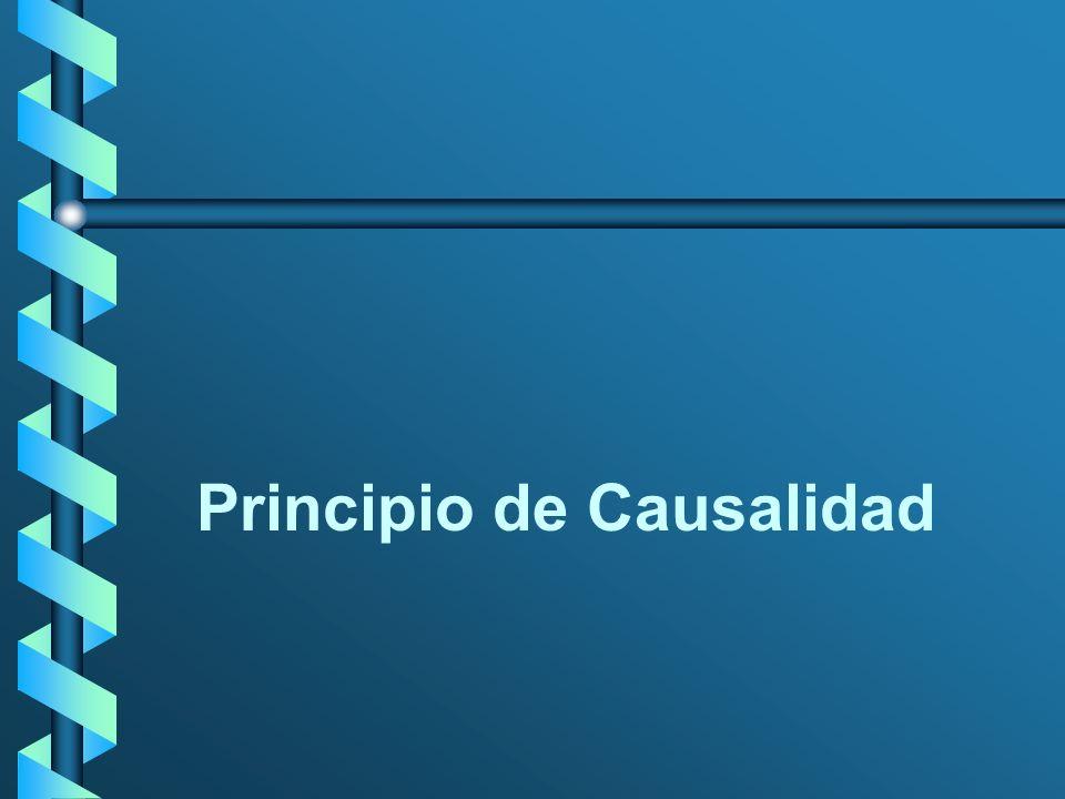 Principio de causalidad Art.