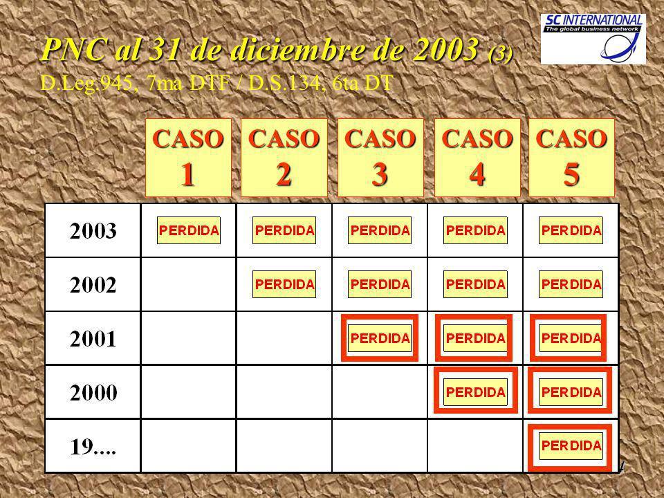 Rubén Del Rosario14 PNC al 31 de diciembre de 2003 (3) PNC al 31 de diciembre de 2003 (3) D.Leg.945, 7ma DTF / D.S.134, 6ta DT CASO1 CASO2CASO3CASO4CASO5
