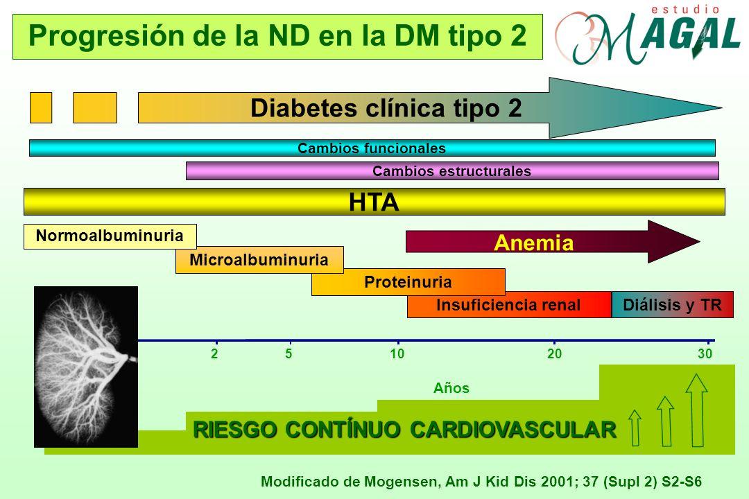 RIESGO CONTÍNUO CARDIOVASCULAR Modificado de Mogensen, Am J Kid Dis 2001; 37 (Supl 2) S2-S6 Progresión de la ND en la DM tipo 2 Cambios funcionales In