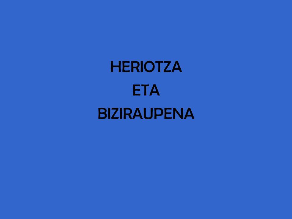 HERIOTZA ETA BIZIRAUPENA