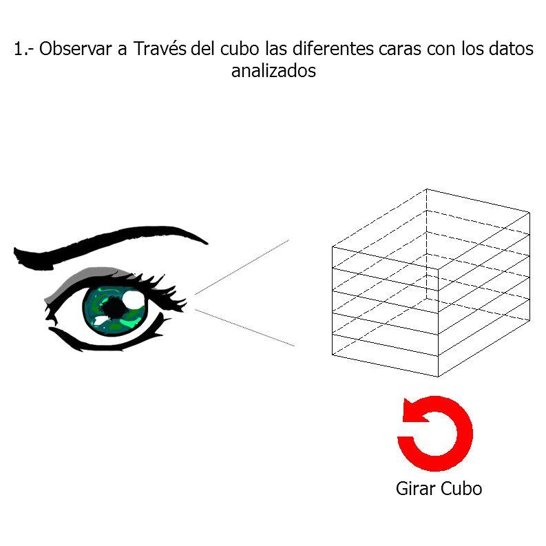 1.- Observar a Través del cubo las diferentes caras con los datos analizados Girar Cubo
