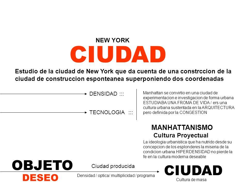 CIUDAD DESEO OBJETO CIUDAD NEW YORK / Ciudad producida Estudio de la ciudad de New York que da cuenta de una constrccion de la ciudad de construccion