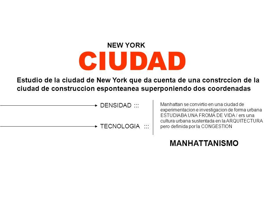 CIUDAD MANHATTANISMO NEW YORK / Estudio de la ciudad de New York que da cuenta de una constrccion de la ciudad de construccion esponteanea superponien