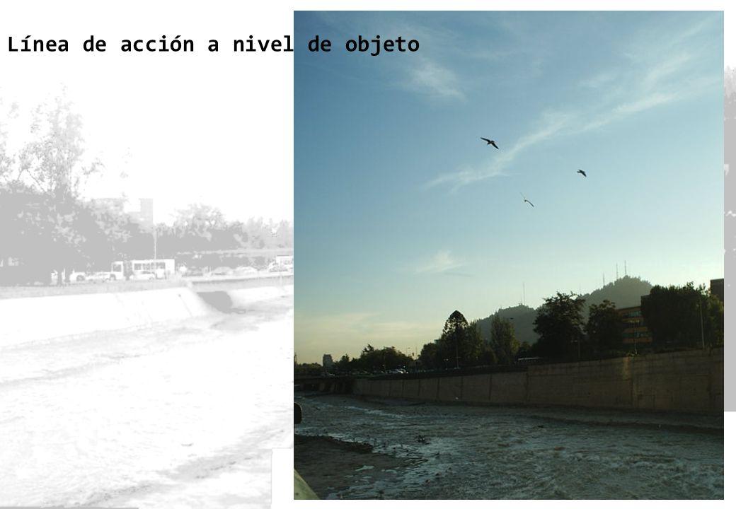 _ bordes y sobrebordes _desarrollo conceptual Las aves también encauzan al Mapocho de manera virtual.