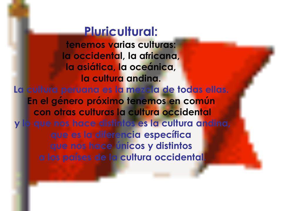 Es uninacional: es un solo Perú con el milagro de la unidad peruana en Costa, Sierra y Selva, con hombres que aunque no nos parecemos en nada tenemos