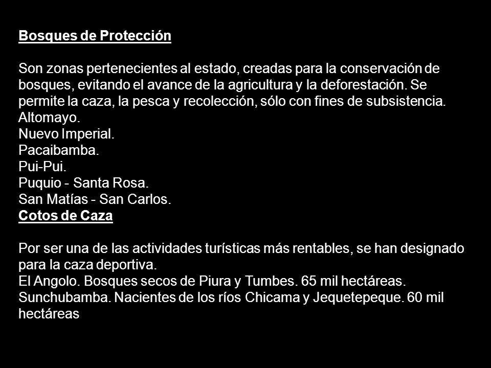 PATRIMONIO NATURAL DEL PERÚ 5´830 mil hectáreas de patrimonio natural Una superficie de 1 285,216 kilómetros cuadrados.