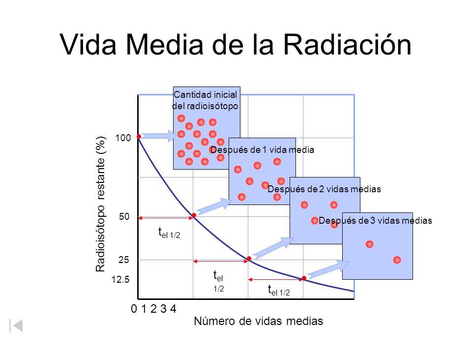 0 1 2 3 4 Número de vidas medias Radioisótopo restante (%) 100 50 25 12.5 Vida Media de la Radiación Cantidad inicial del radioisótopo t el 1/2 Despué