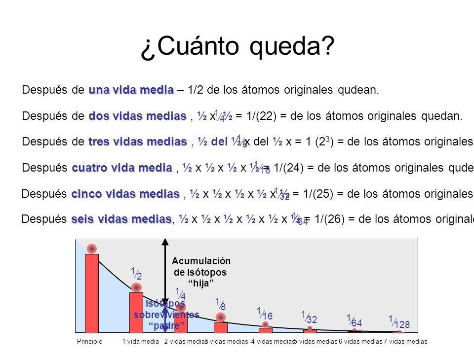 ¿ Cuánto queda? una vida media Después de una vida media – 1/2 de los átomos originales qudean. dosvidas medias Después de dos vidas medias, ½ x ½ = 1