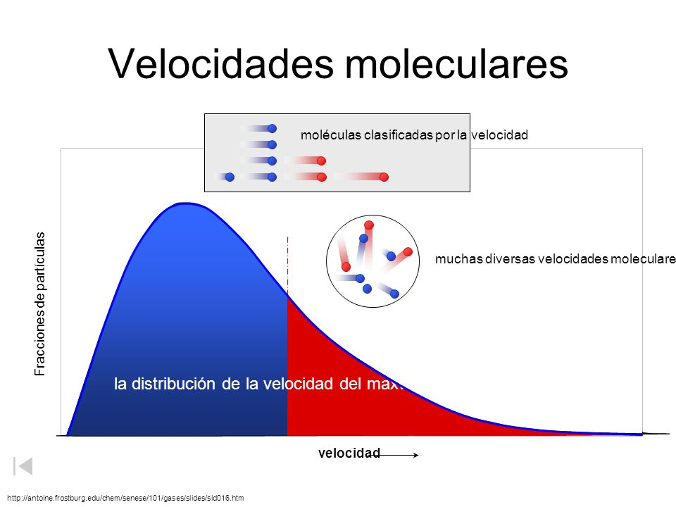 Calor contra temperatura Energía cinética Fracciones de partículas una temperatura más baja una temperatura más alta TOTAL ENERGÍA cinética = calor