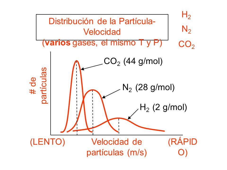 (2 g/mol) Distribución de la Partícula- Velocidad (varios gases, el mismo T y P) # de partículas Velocidad de partículas (m/s) (LENTO)(RÁPID O) CO 2 (