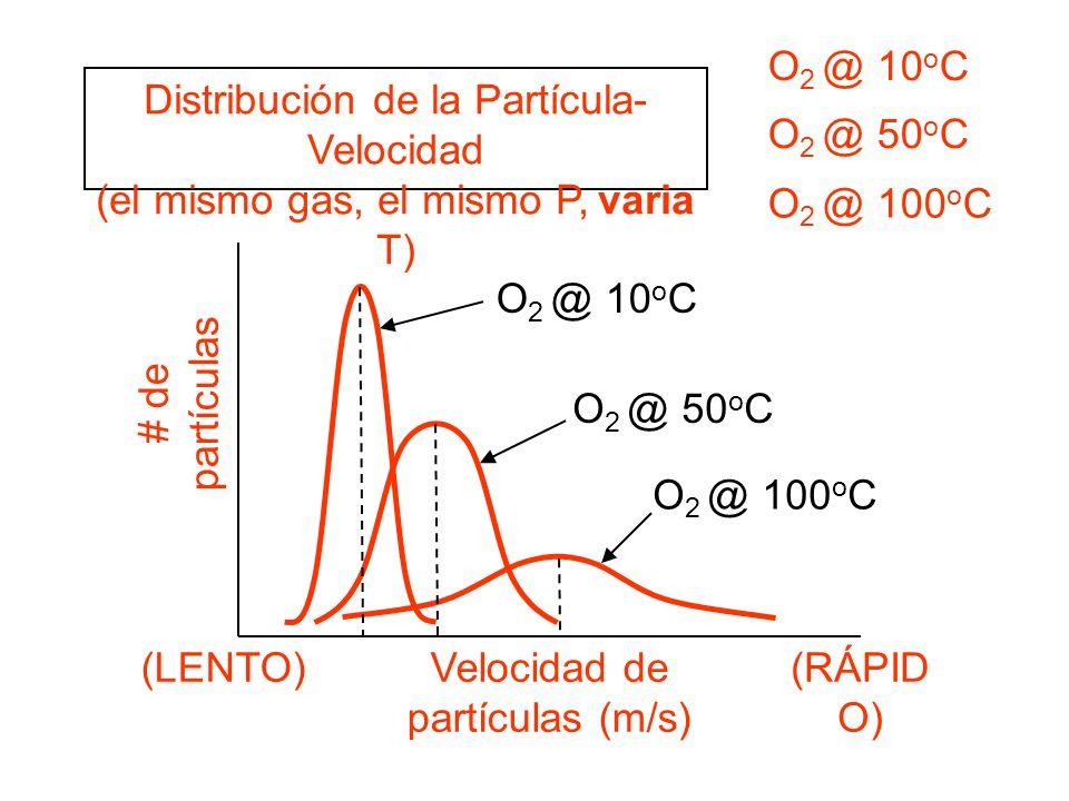 Distribución de la Partícula- Velocidad (el mismo gas, el mismo P, varia T) # de partículas Velocidad de partículas (m/s) (LENTO)(RÁPID O) O 2 @ 10 o