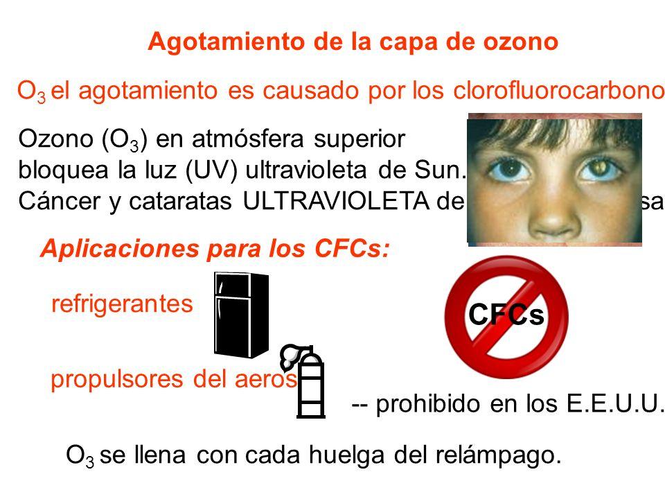 Agotamiento de la capa de ozono O 3 el agotamiento es causado por los clorofluorocarbonos (CFCs). Aplicaciones para los CFCs: refrigerantes Ozono (O 3