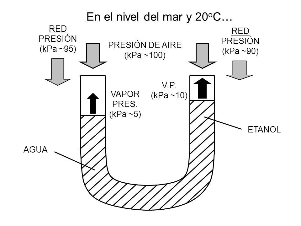 En el nivel del mar y 20 o C… AGUA PRESIÓN DE AIRE (kPa ~100) ETANOL VAPOR PRES. (kPa ~5) V.P. (kPa ~10) RED PRESIÓN (kPa ~95) RED PRESIÓN (kPa ~90)