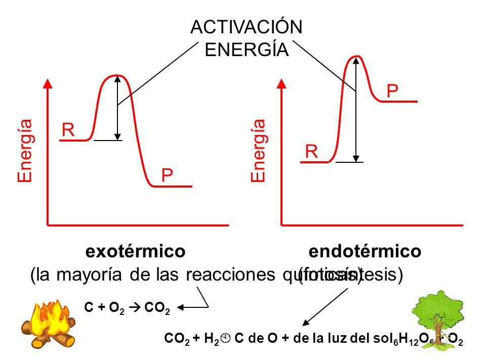 R P Energía endotérmico exotérmico R P Energía ACTIVACIÓN ENERGÍA (la mayoría de las reacciones químicas)(fotosíntesis) CO 2 + H 2 C de O + de la luz