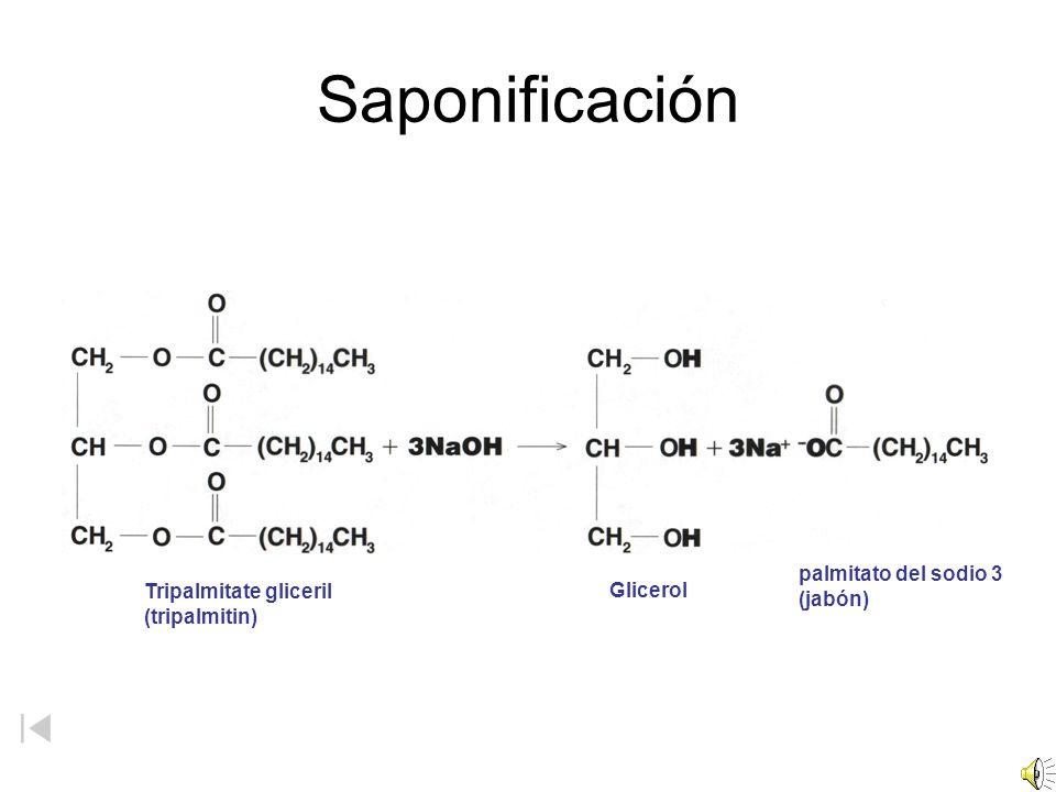 Saponificación Tripalmitate gliceril (tripalmitin) Glicerol palmitato del sodio 3 (jabón)
