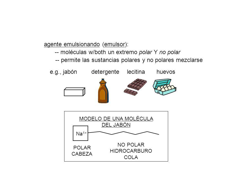 MODELO DE UNA MOLÉCULA DEL JABÓN NO POLAR HIDROCARBURO COLA POLAR CABEZA Na 1+ agente emulsionando (emulsor): -- moléculas w/both un extremo polar Y n