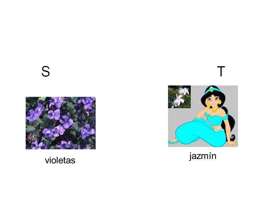 violetas jazmín
