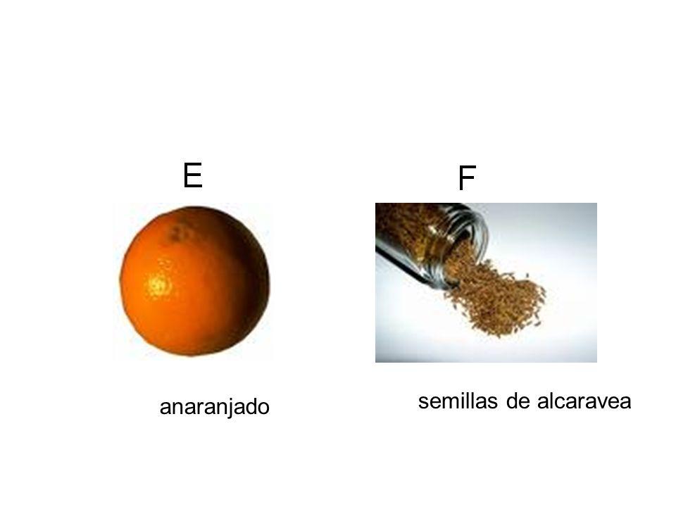 anaranjado semillas de alcaravea