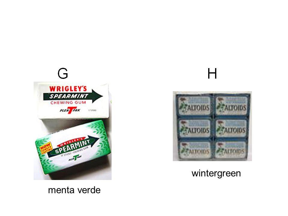 menta verde wintergreen