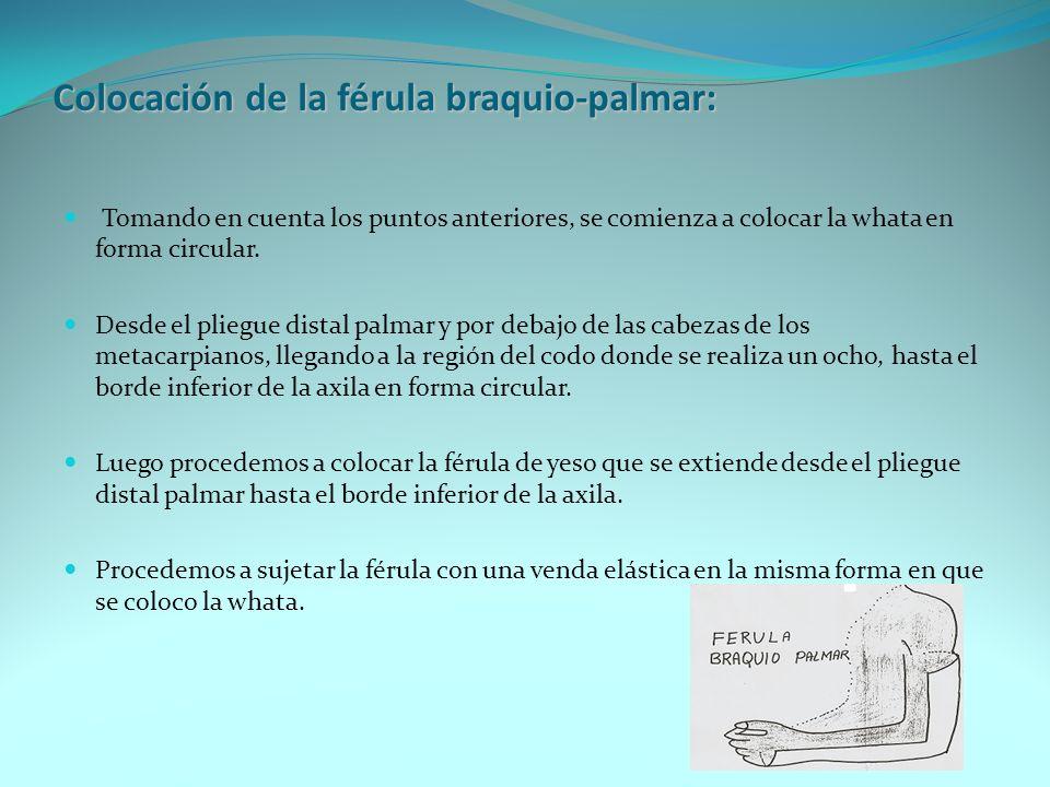 Colocación de la férula ante braquio-palmar: Se comienza a colocar la whata en forma circular desde el pliegue distal palmar y por debajo de las cabezas de los metacarpianos, hasta 3 cm por debajo de la articulación del codo.