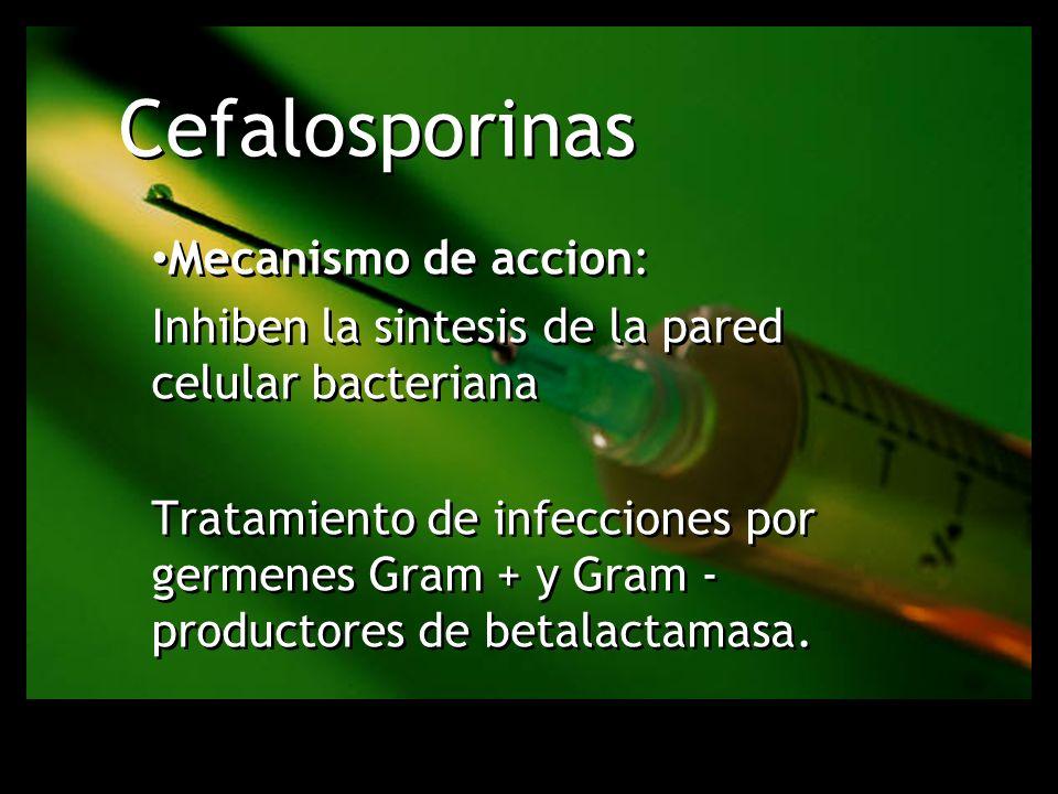 Cefalosporinas Mecanismo de accion: Inhiben la sintesis de la pared celular bacteriana Tratamiento de infecciones por germenes Gram + y Gram - product
