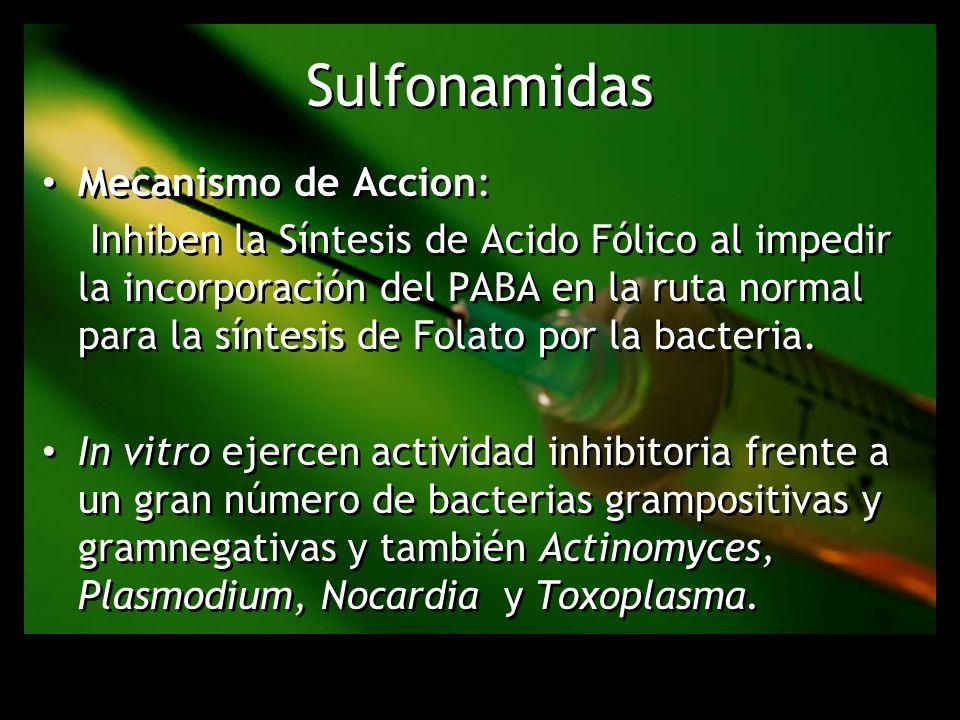 Sulfonamidas Mecanismo de Accion: Inhiben la Síntesis de Acido Fólico al impedir la incorporación del PABA en la ruta normal para la síntesis de Folat
