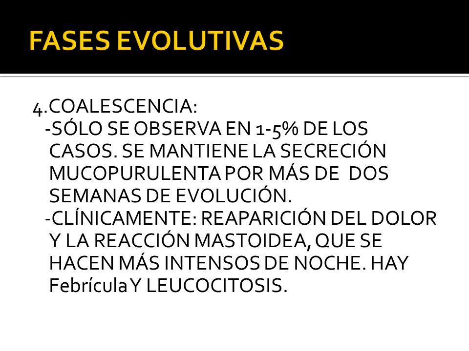 4.COALESCENCIA: -SÓLO SE OBSERVA EN 1-5% DE LOS CASOS. SE MANTIENE LA SECRECIÓN MUCOPURULENTA POR MÁS DE DOS SEMANAS DE EVOLUCIÓN. -CLÍNICAMENTE: REAP